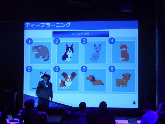 ディープラーニング猫と犬