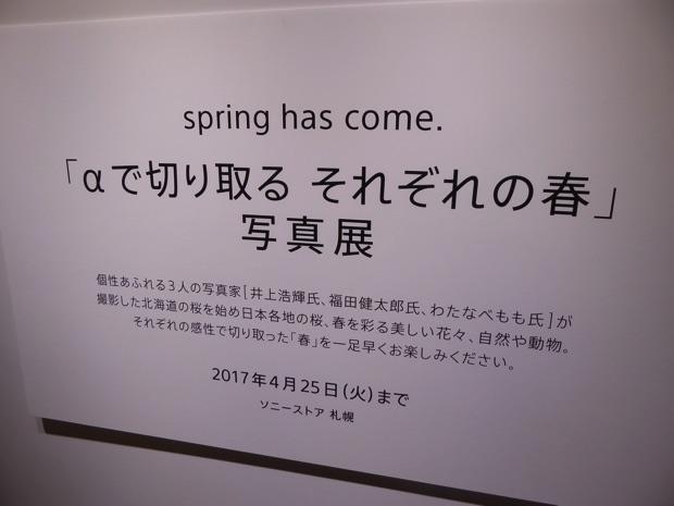 「αで切り取る それぞれの春」