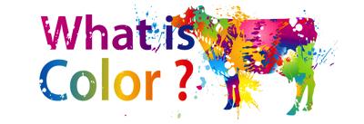 ファームノートサミットレポート③ オープニング「Farmnoteの挑戦 〜What is Color ?〜」