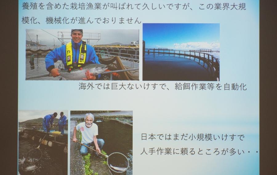 海外と日本の養殖の違い