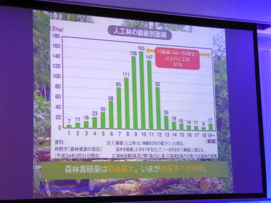 人工林の齢級別面積